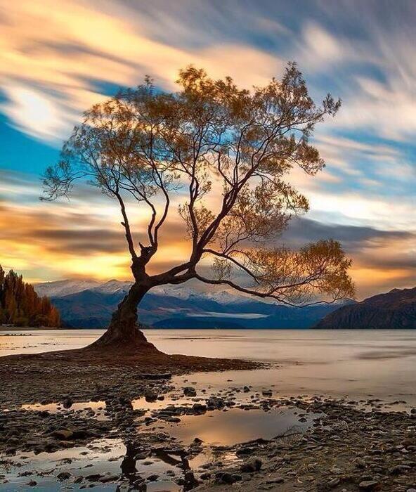Wanaka, New Zealand. pic.twitter.com/yOq2RJxzPV