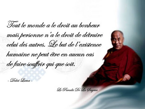Nouvel Dalaï Lama - 52 Citations | Sagesse et philosophie | Citation DO-29