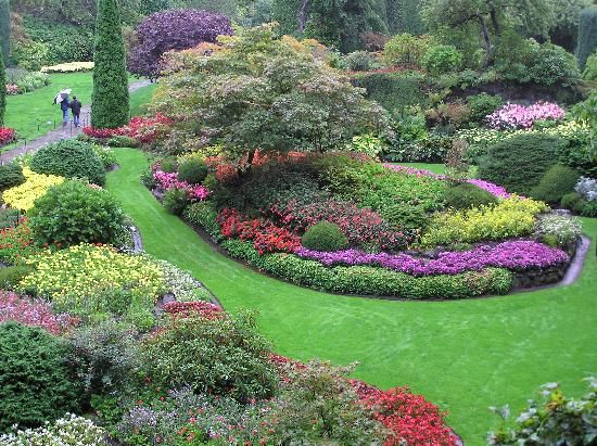 In The Quarry Garden Butchart Gardens Victoria B C Canada Flowers And Gardens Pinterest