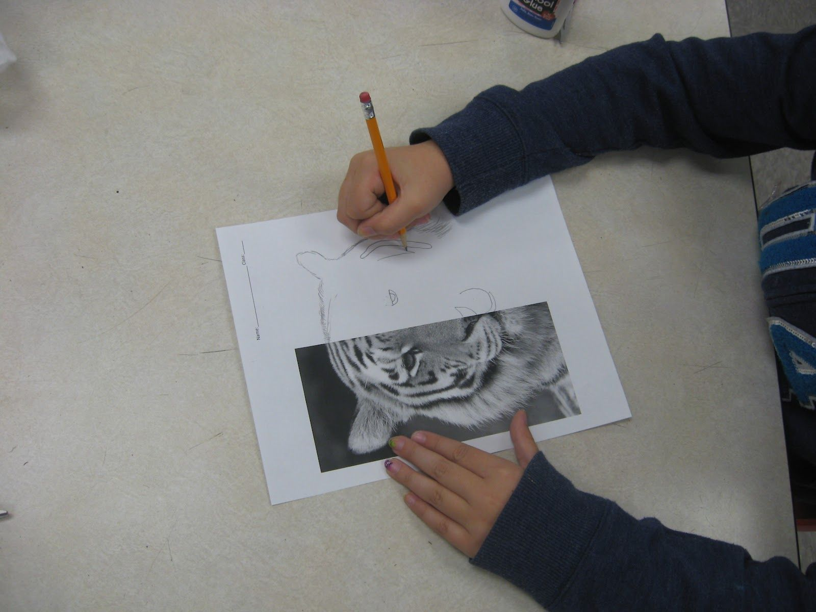 Draw The Other Half Worksheets