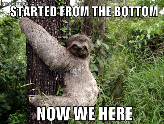 Happy birthday sloth meme - photo#23