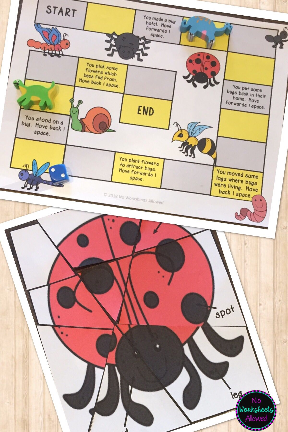 Insects And Bugs Investigations Activities And Emergent