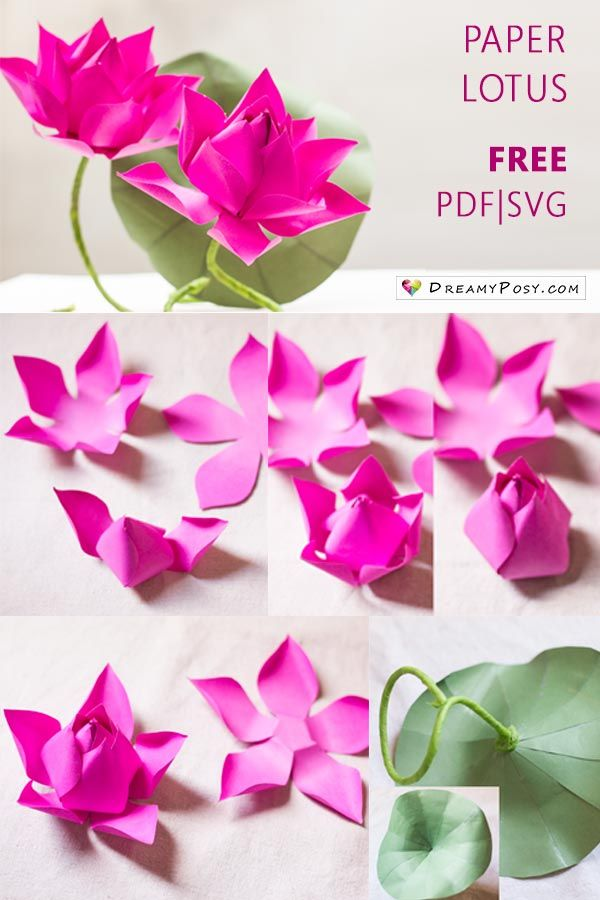 Flower Making With Paper Free Template And Step By Step Tutorial