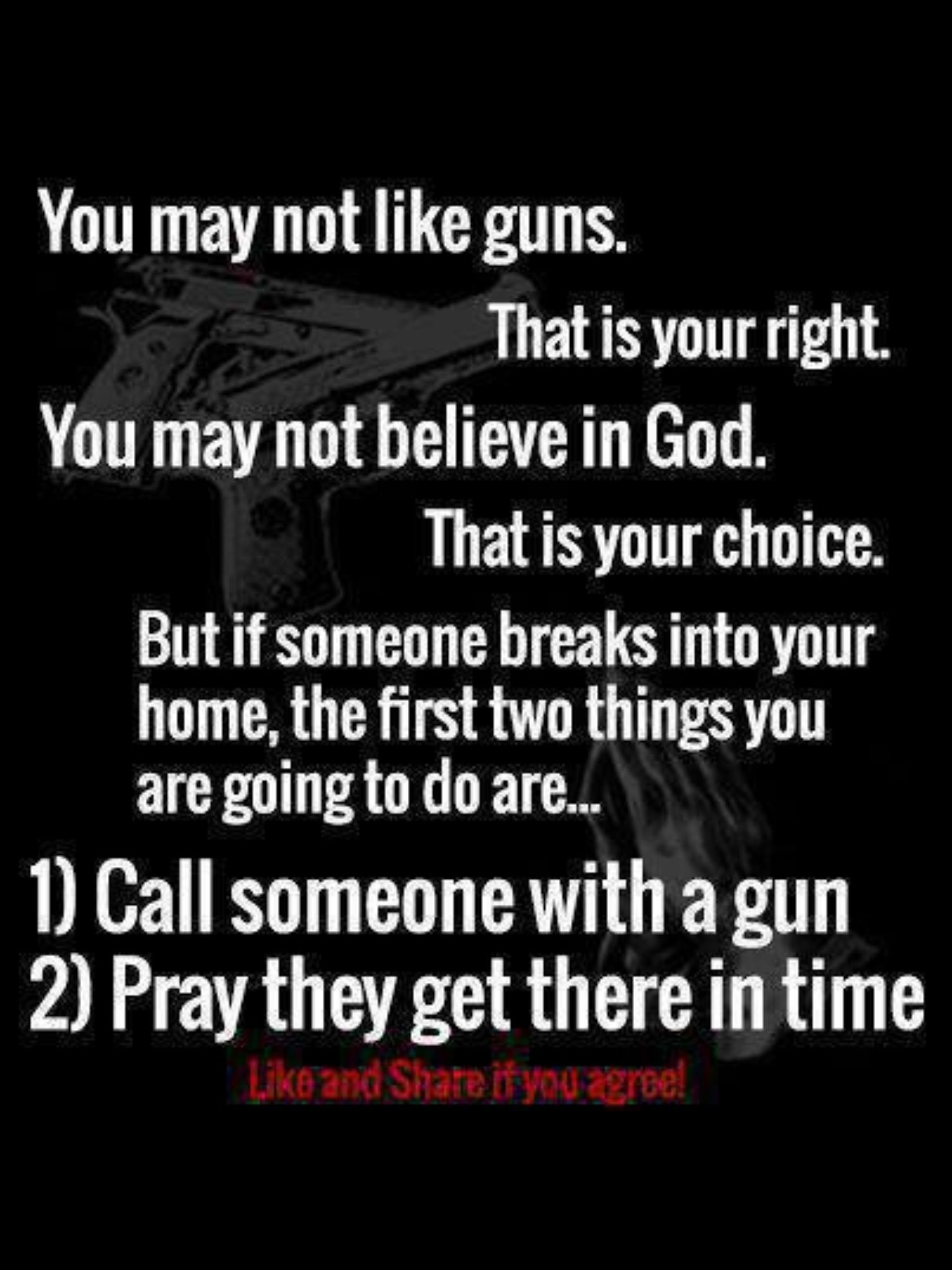 Pro Gun Quotes 3 Pray They Don't Shoot You Instead Of The Intruder  Quotes I