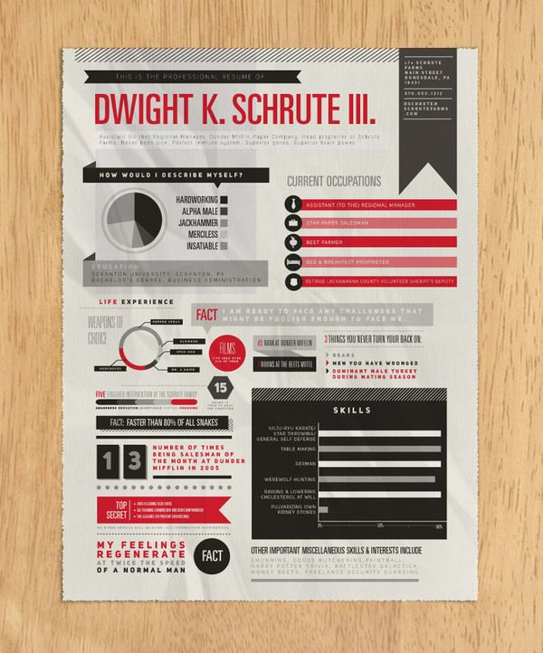 When Infographics Meet Resume 36 excellent examples Infographics