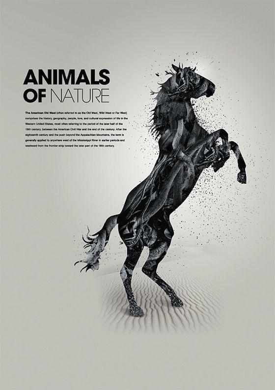 Animals-of-Natu...