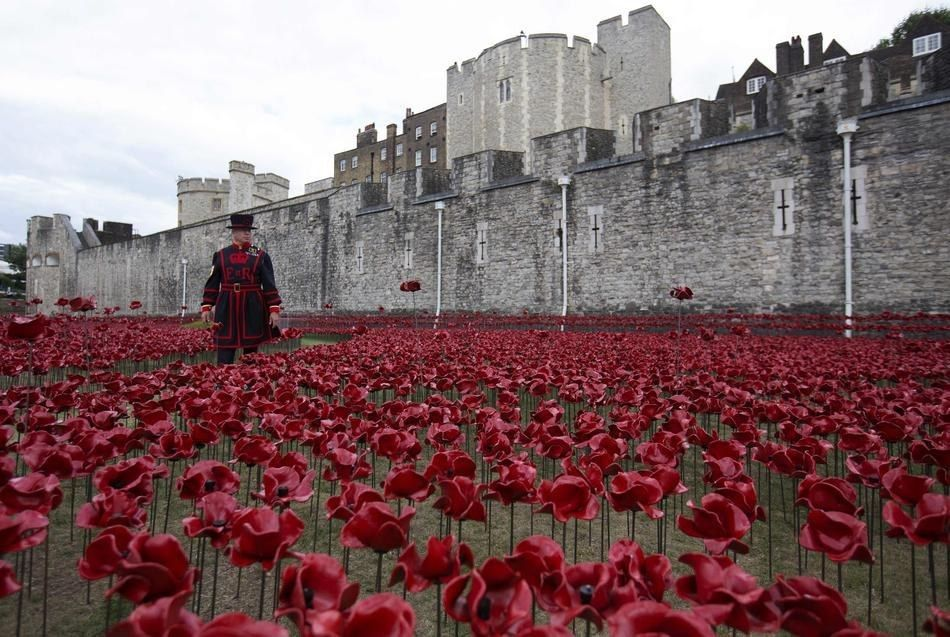 Stunning Pictures Of The Ceramic Poppies Outside The Tower Of - Tower of london river of poppies