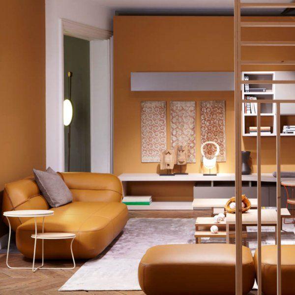 Le brun naturel et intemporel salon d coration - Decoration living couleurs ...