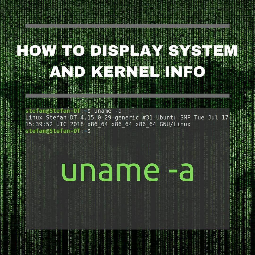 How To View Kernel And System Info On Linux Computer