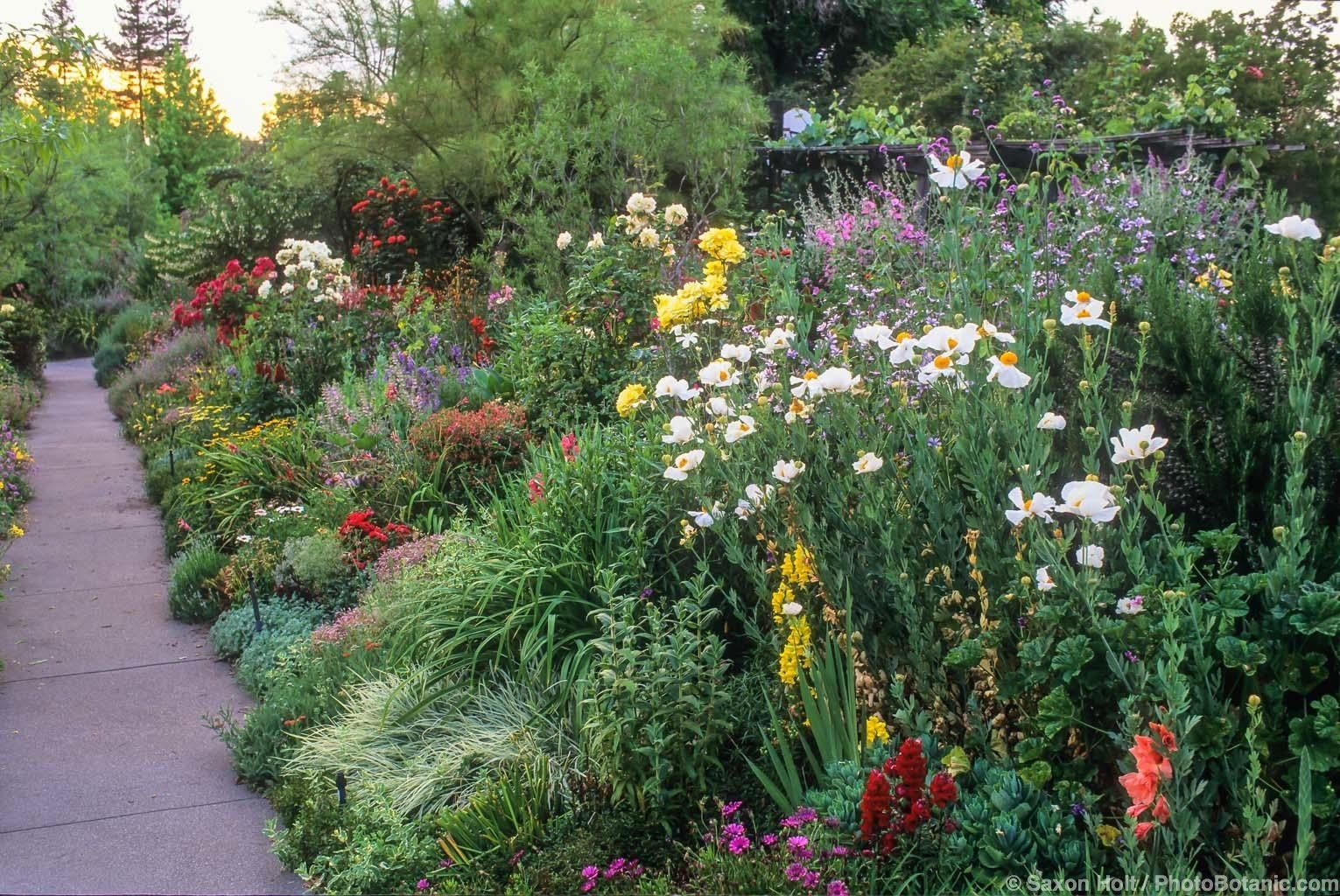 High Quality Stunningly Beautiful Waterwise Gardens California Photo Gallery / Armstrong  Garden Centers