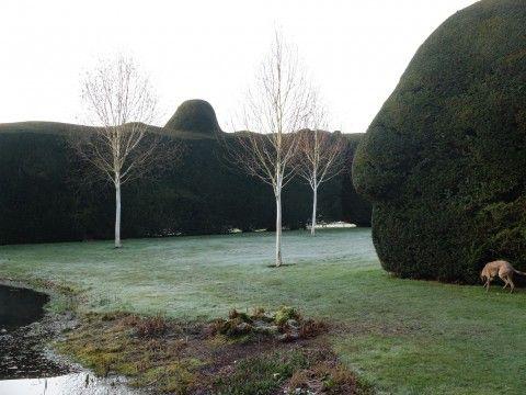 Doddington Place Gardens - » Spring at Doddington Place, Kent - Faversham, Sittingbourne, Kent