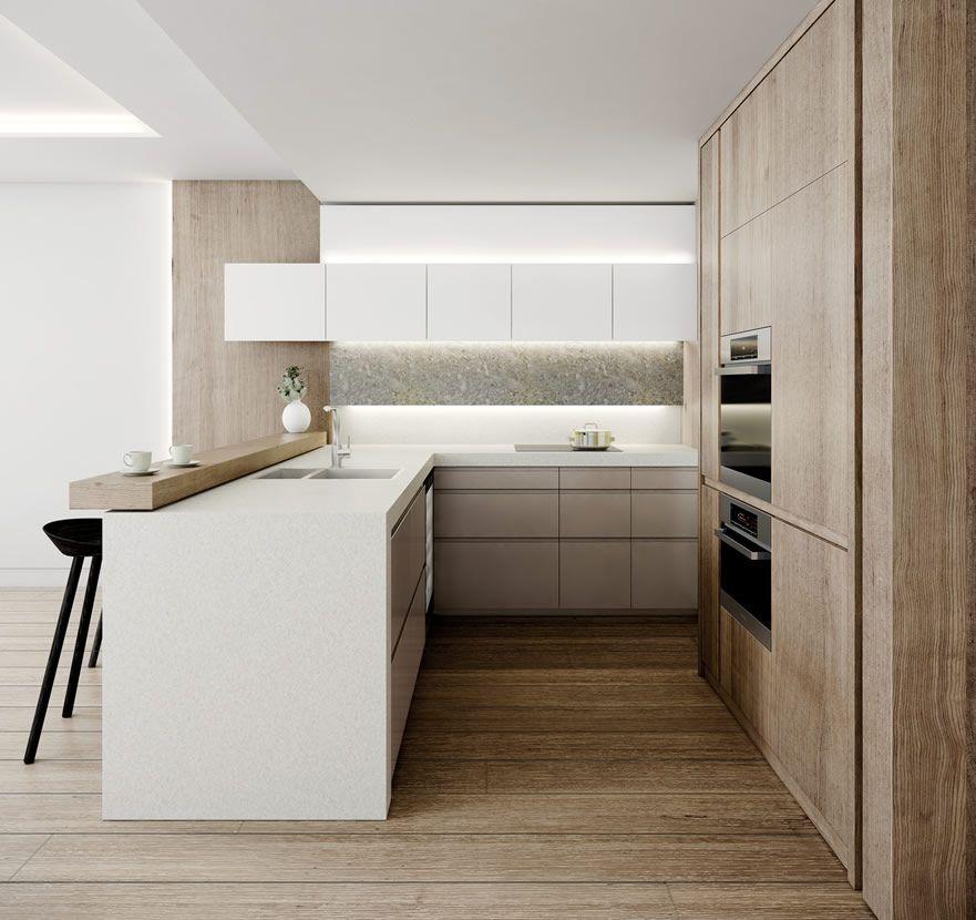 10 Exquisite Minimalist Kitchen Fridge Ideas Kitchen Remodel Small Minimalist Kitchen Design Modern Kitchen