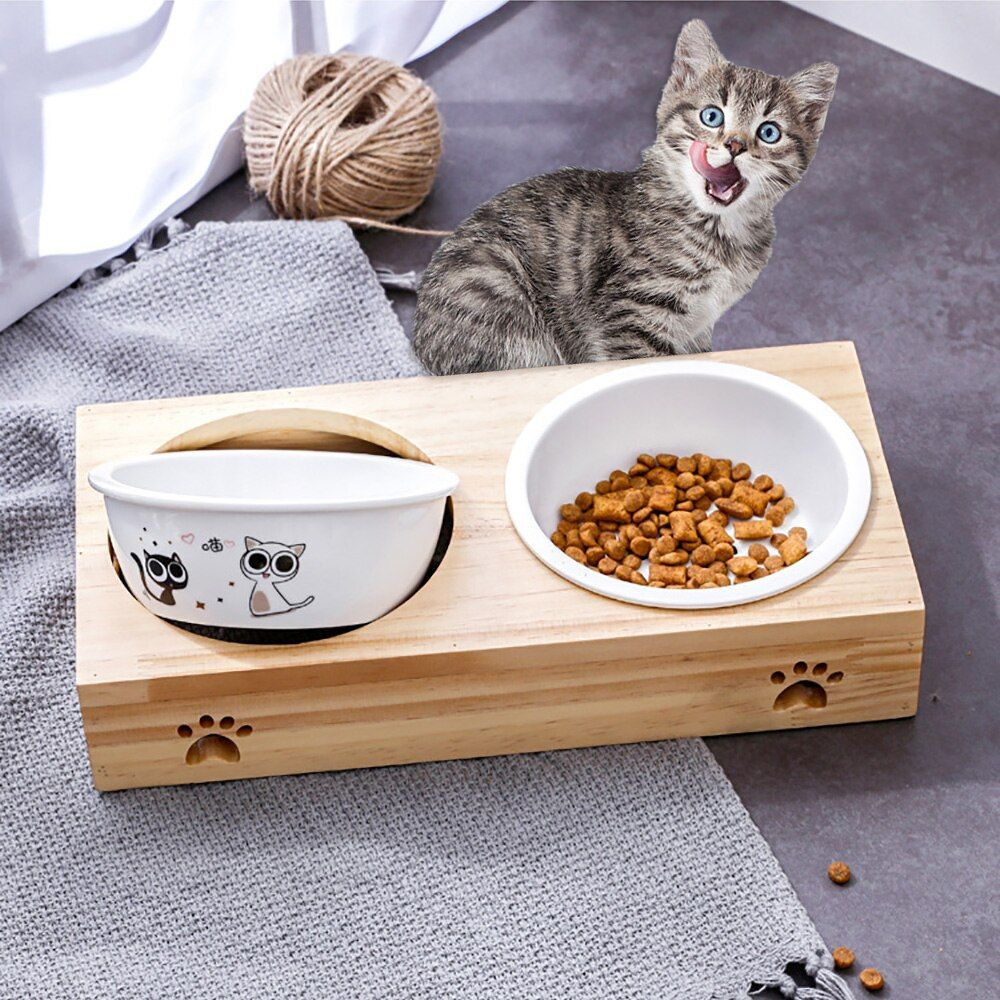 Cat Bowl For Dog Pet Double Ceramic Bowls With Bamboo Base Cat Food Water Stainless Steel Bowl Feeding Drinking Su In 2020 Cat Bowls Ceramic Bowls Stainless Steel Bowl