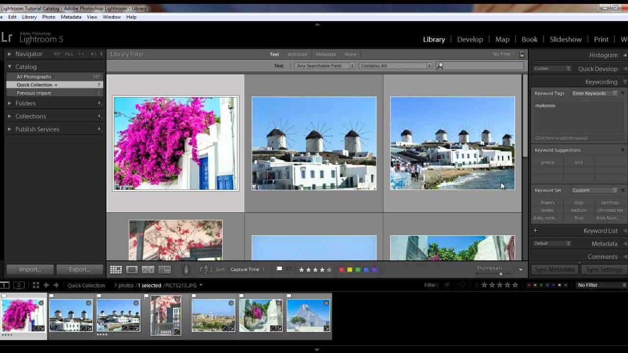 lightroom 5 tutorial: full screen mode, lights out viewing tips