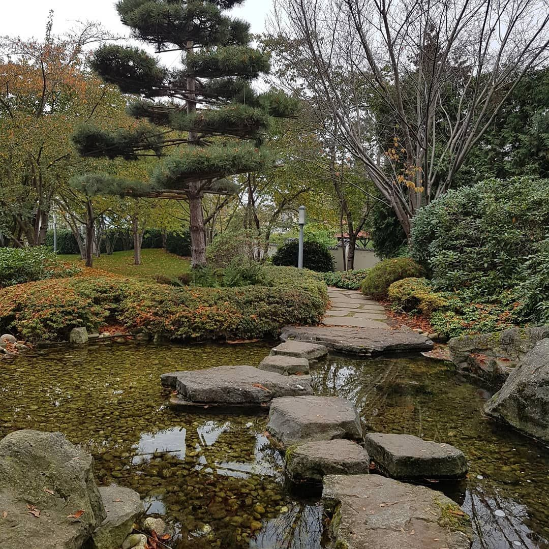 Japanischer Garten Bad Langensalza Badlangensalza Thuringen Japanischergarten Urlaub Reisen Japanischer Garten Garten Design Garten