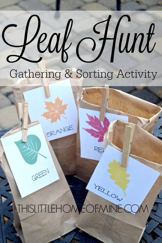 Fall Leaf Hunt Activity: Gather & Sort | This Little Home of Mine ...