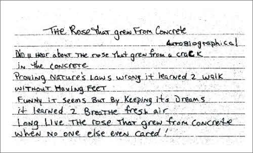 The Rose That Grew From Concrete Written By Tupac Shakur 1971
