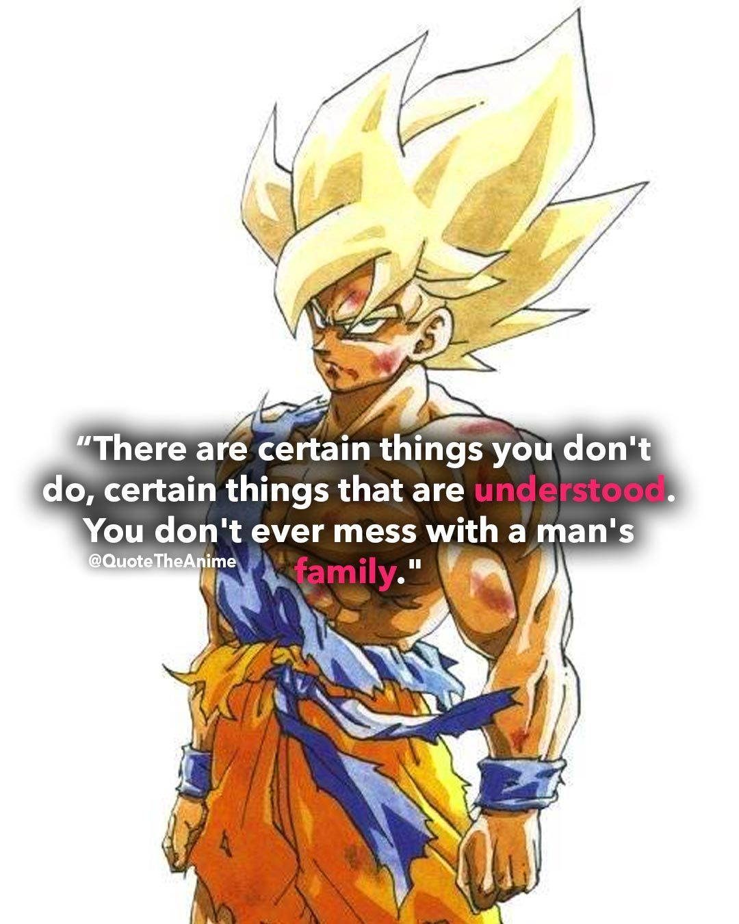 I Will Not Let You Destroy My World Goku Quotes Dragon Ball Anime Dragon Ball
