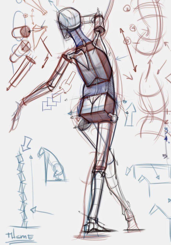 Тру Художник|Уроки рисования|Арт Портреты | Art - Anatomy : Figure 2 ...