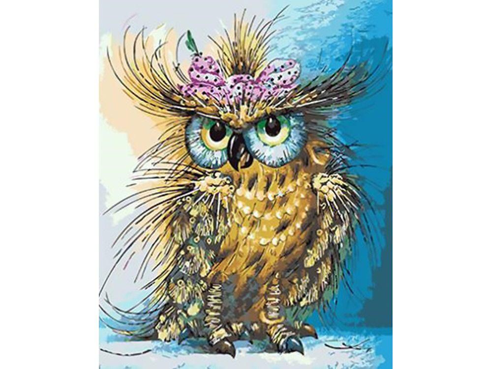 Картина по номерам «Мадам сова» | Животные, птицы, рыбки ...