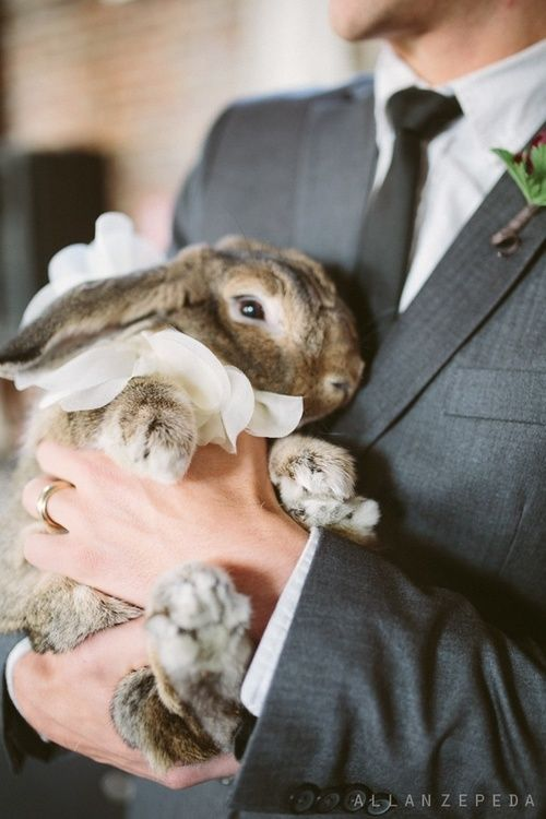 Bunny Flower Girl