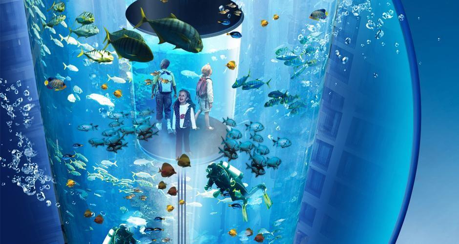 sea life aqua dom 2 honeymoon paris and berlin pinterest sea life berlin and city. Black Bedroom Furniture Sets. Home Design Ideas