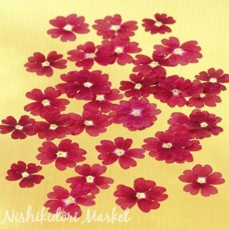 Fleurs séchées de verveine rouge comestibles 50 unités - Nishikidori