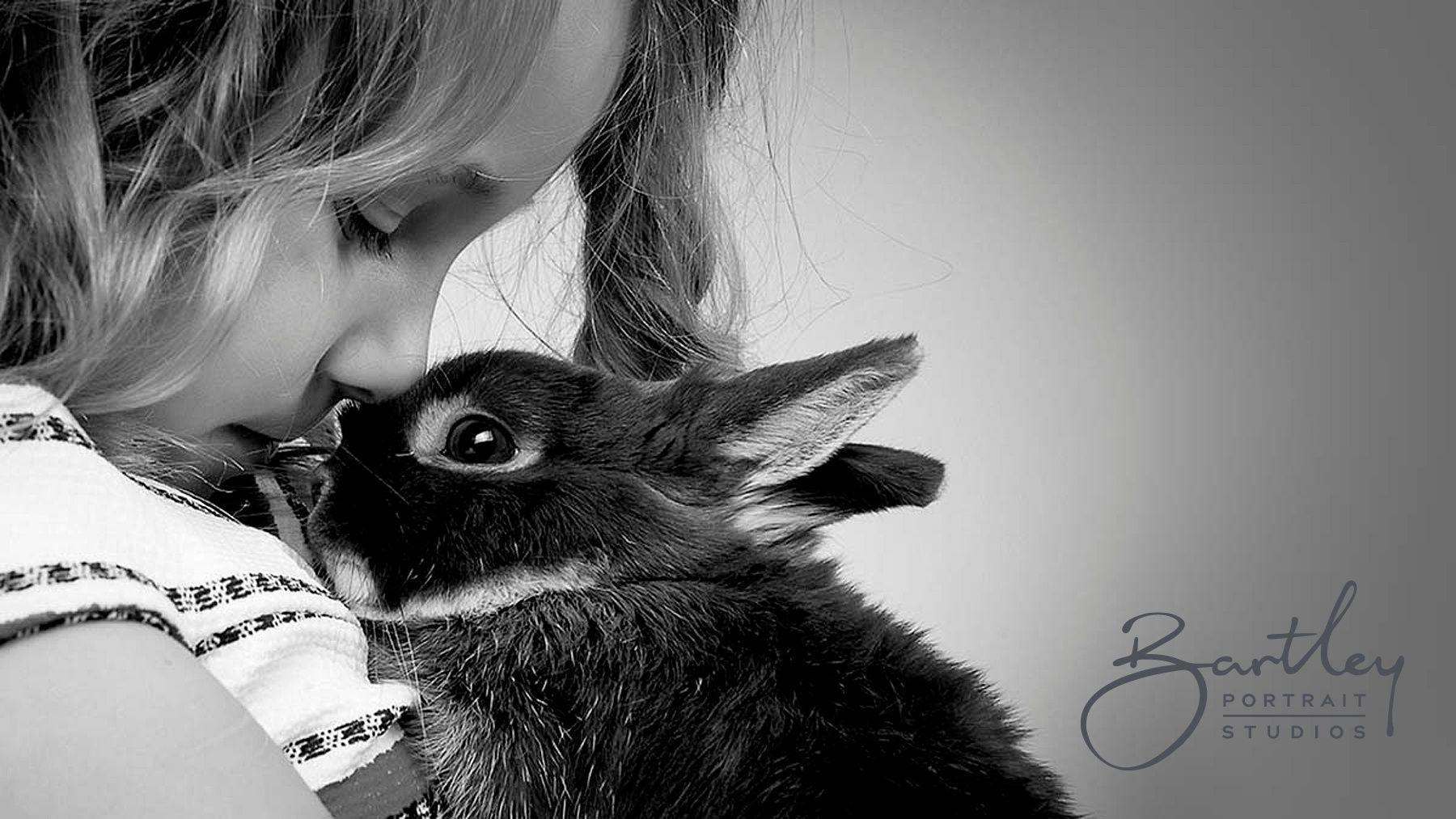 Child Photography Studio Pet Portraits Photography Pet Photography Studio Dog Portrait Photography