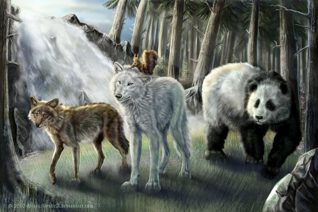Медведь и волки картинки