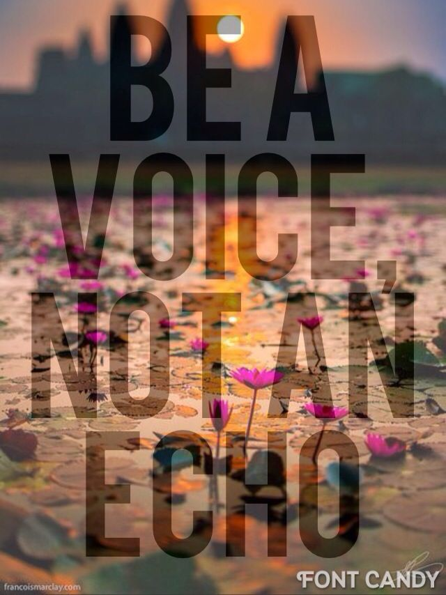 """""""Be a voice not an echo"""" Courage quote"""