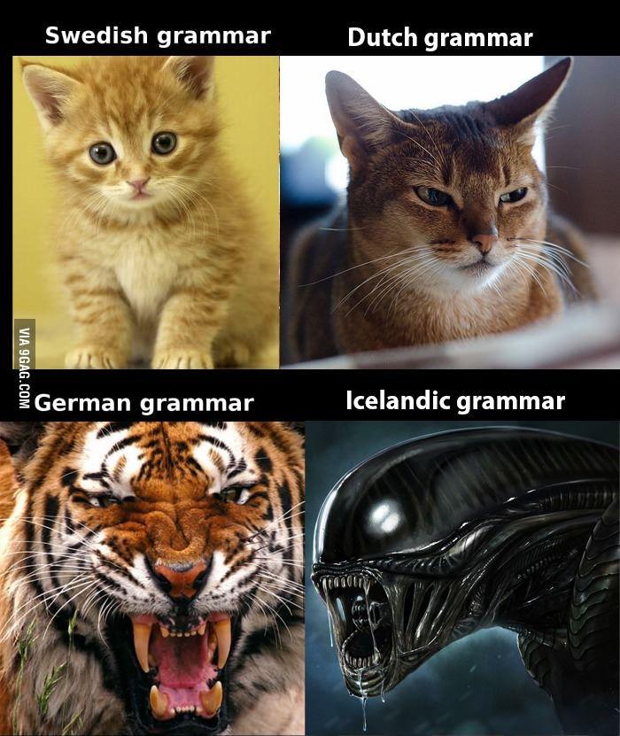 German Grammar Is Not That Horrible German Grammar Funny Memes About Girls Funny Mom Memes