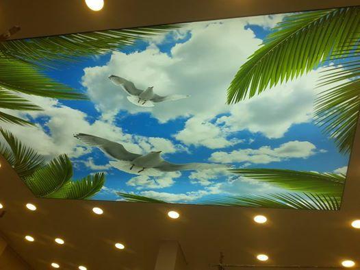 http://www.altavyapi.com/19_gokyuzunde-kuslar-temali-tavan-dekoru.html