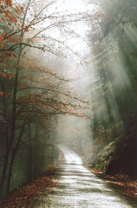 Paths of Serra da Estrela, Manteigas
