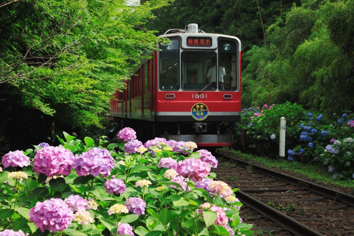 箱根登山鉄道 日本の絶景を世界へ Zekkei Japan 絶景 日本 観光 風景