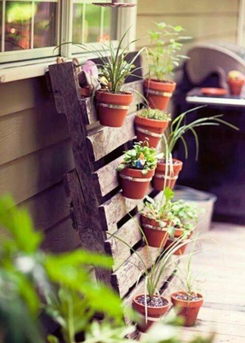 Idee per un orto verticale fai da te - Fotogallery Donnaclick ...