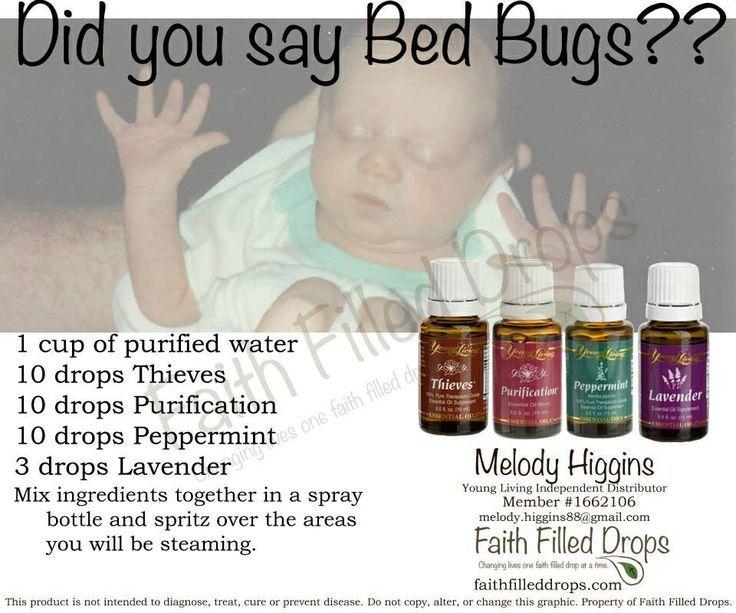 Bugs Bugs Go Away!