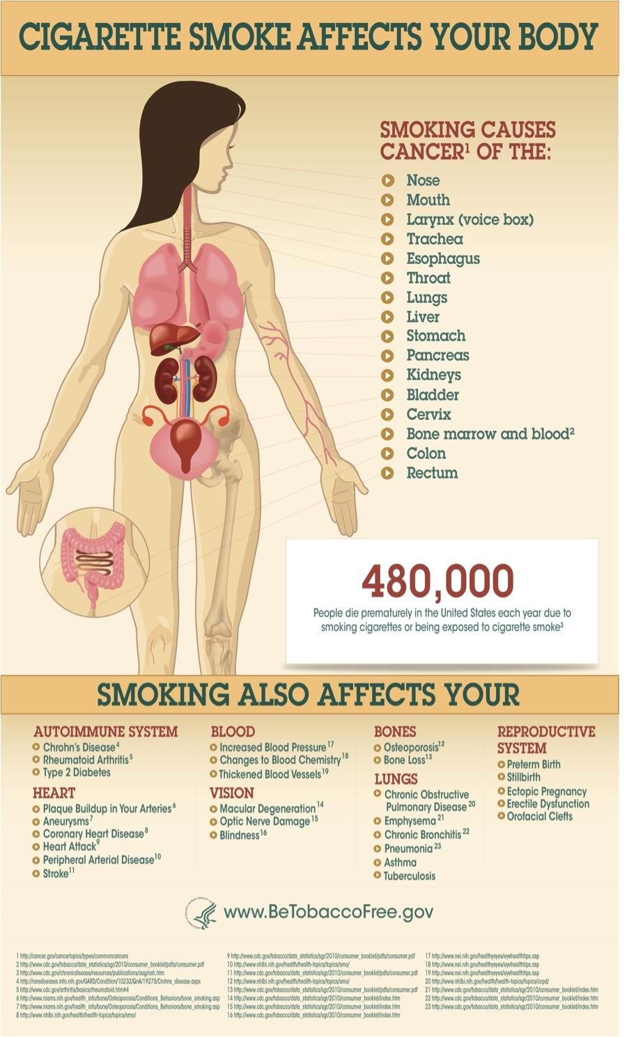 Cigarette smoke affects your body