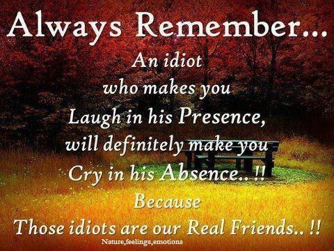 nature feelings emotions quote friendship day quotes quotes