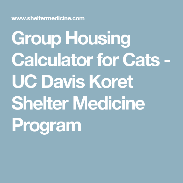 Group Housing Calculator For Cats