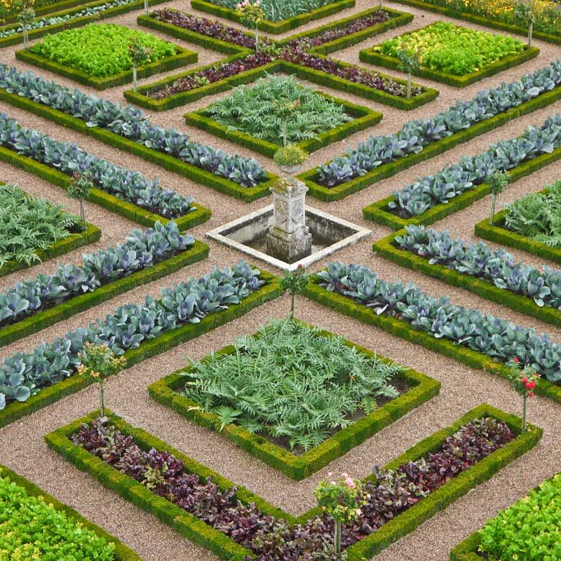 Le Potager D Ornement Vegetable Garden Design Urban Garden