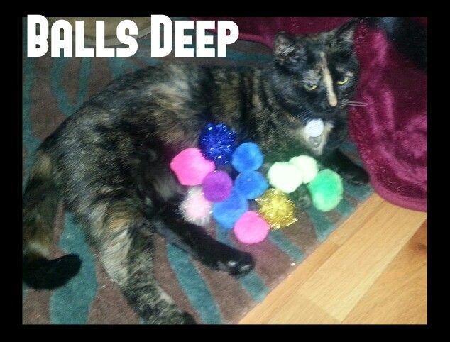 Loki loves her balls