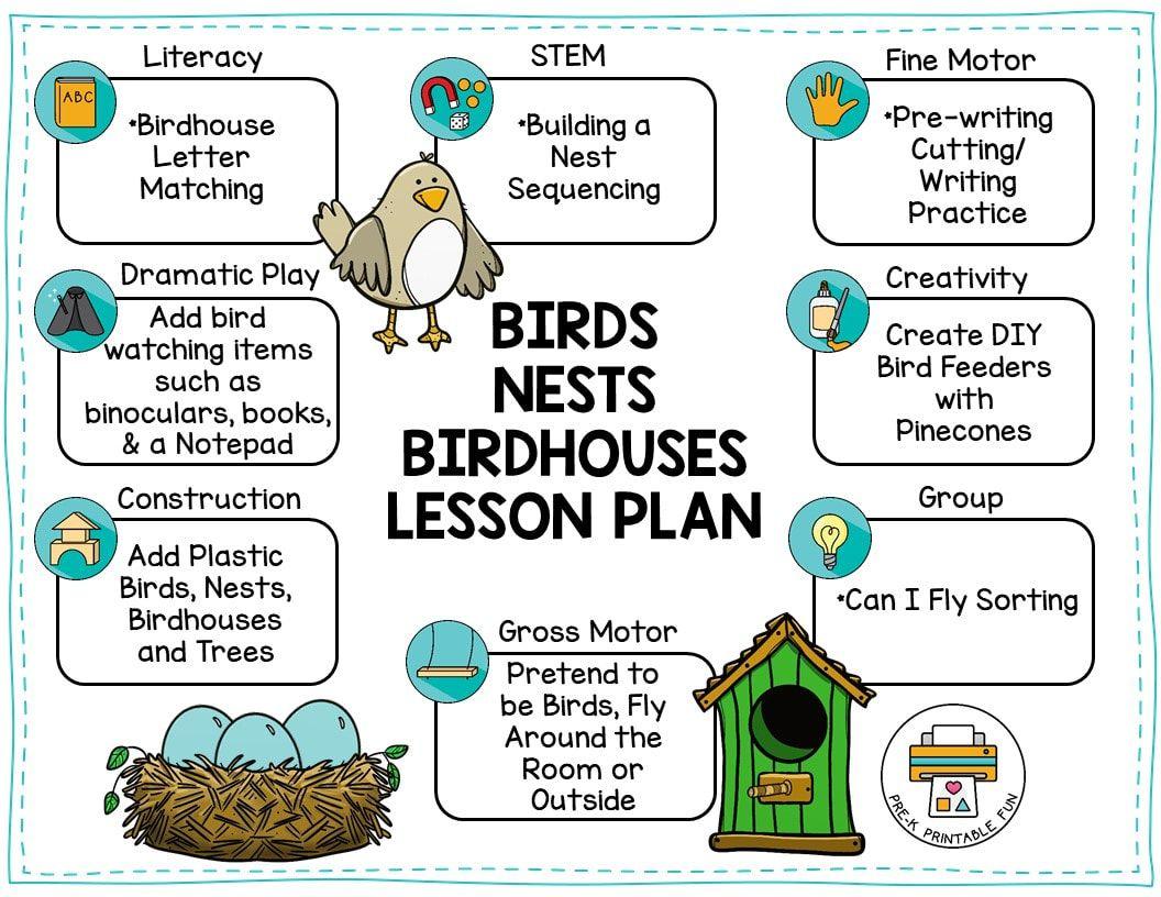 Birds Nests And Birdhouses Preschool Activities Free