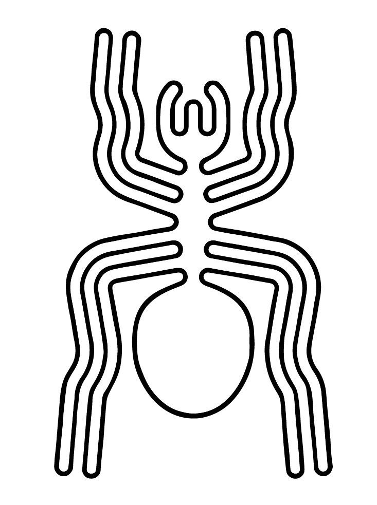 Nazca spider glyhp. The Nazca Lines  are a series of ancient geoglyphs in the Nazca Desert, in southern PIt has been mentioned by other researchers that many of the creatures represented are not native to the area. The most striking example of this is the 45 meter long Spider. It was identified as a member of the rare genus Ricinulei, which is only found in the most remote and inaccessible parts of the Amazon Jungle.