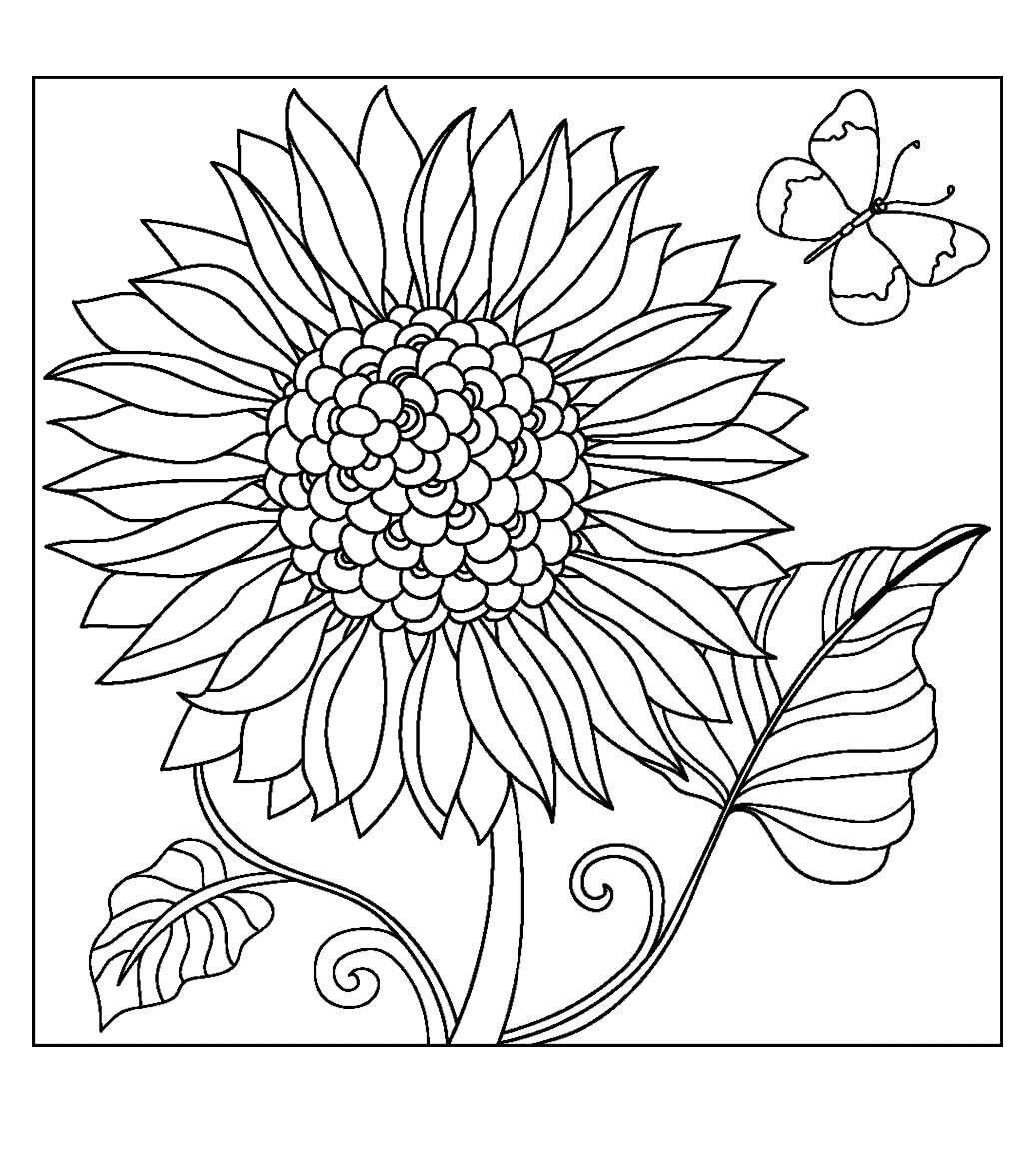 Flower Coloring PagesColoring Pages For AdultsKids ColoringColoring SheetsColoring BooksSunflower CraftsAll FlowersFlower ColorsChristmas Flowers