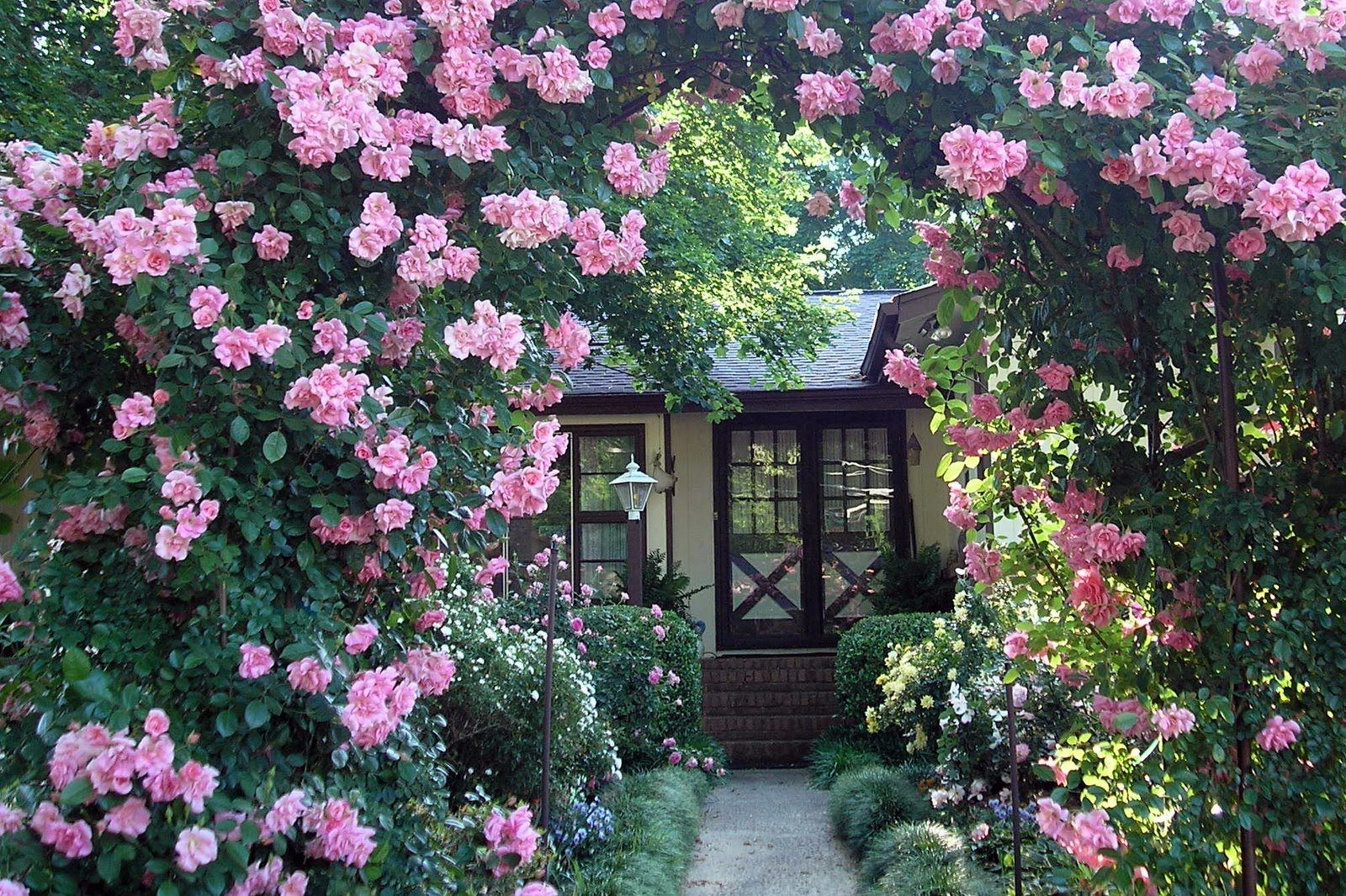 I come to the garden alone acapella growing in him pinterest