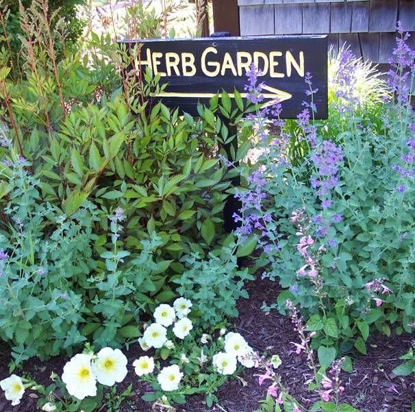 1000 images about Witches Garden on Pinterest Gardens Wiccan