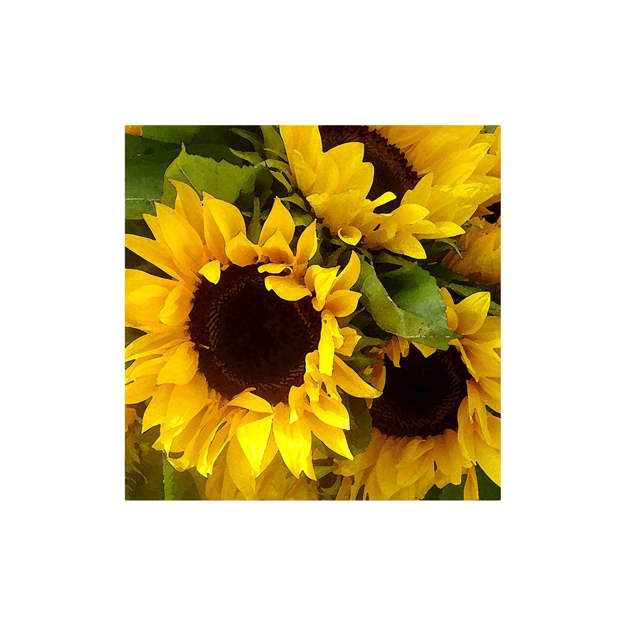 Sunflowers\' by Amy Vangsgard Ready to Hang Canvas Wall Art, Yellow ...