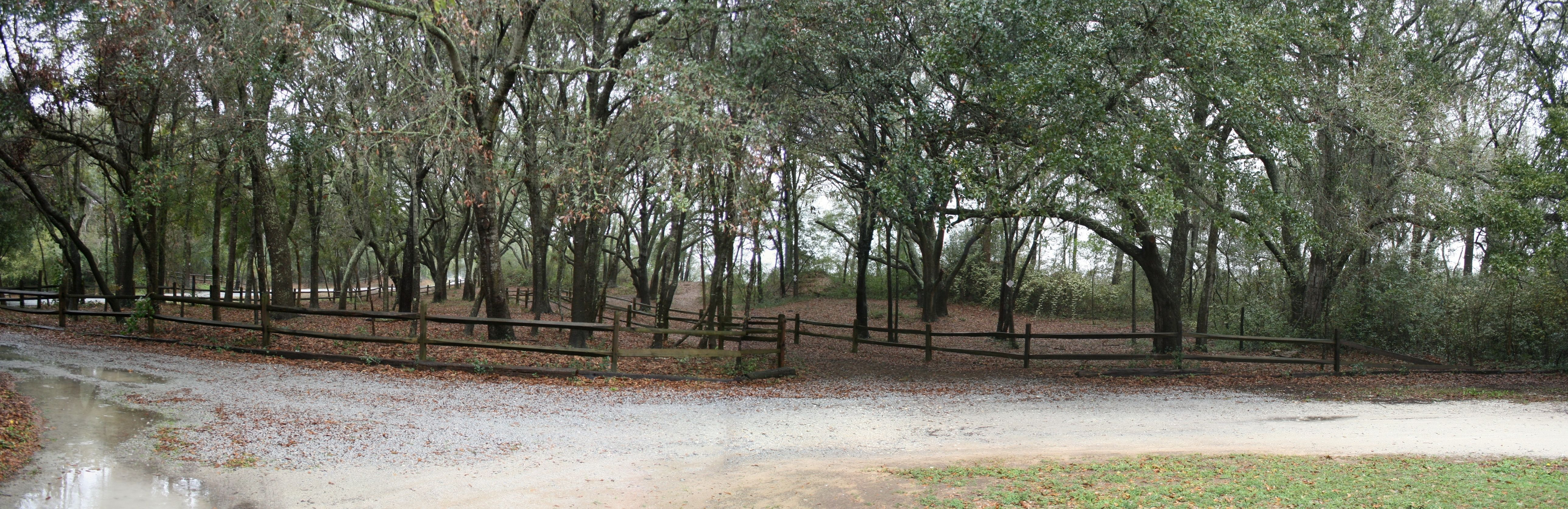 Earthwork Embankment At ACTUAL Site Of Ft. Lamar/Battle Of Secessionville,  James Island