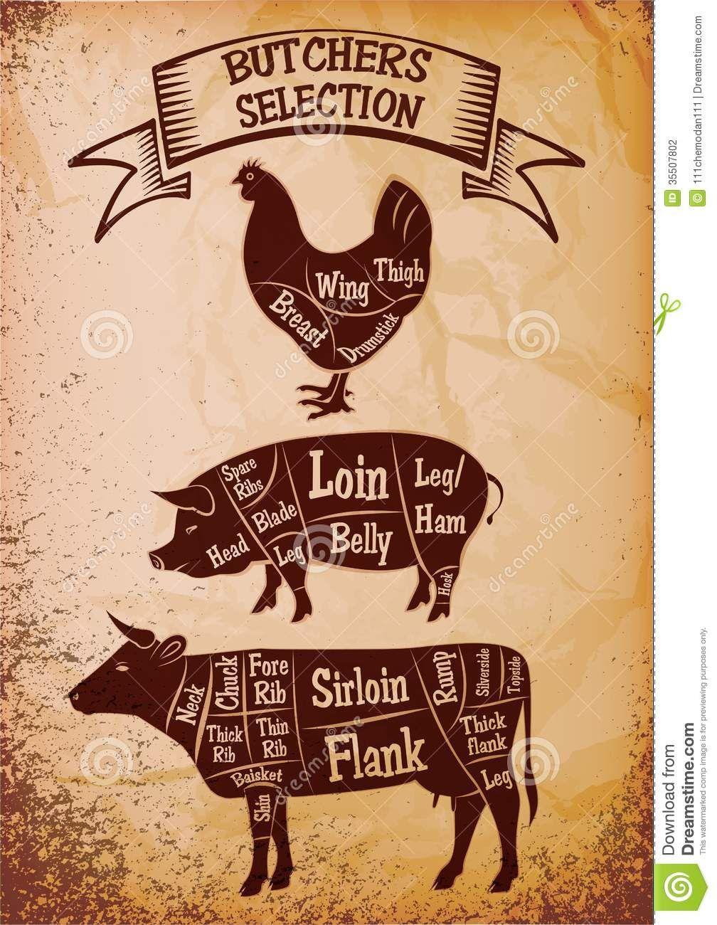 simple beef anatomy google search butcher s cut chart  [ 1008 x 1300 Pixel ]