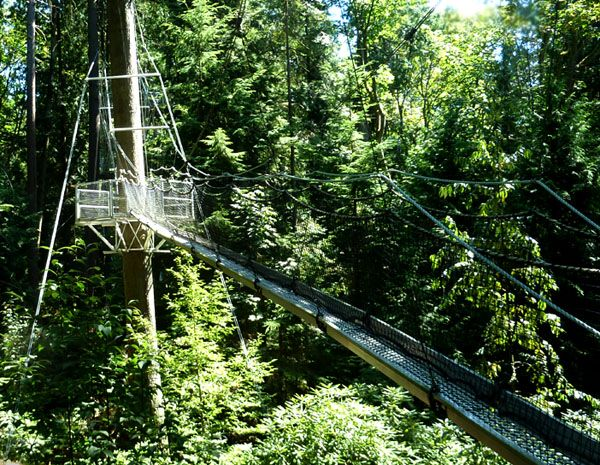 Greenheart Canopy Walkway - The 310m long tree top canopy walkway is located in the heart & Greenheart Canopy Walkway - The 310m long tree top canopy walkway ...